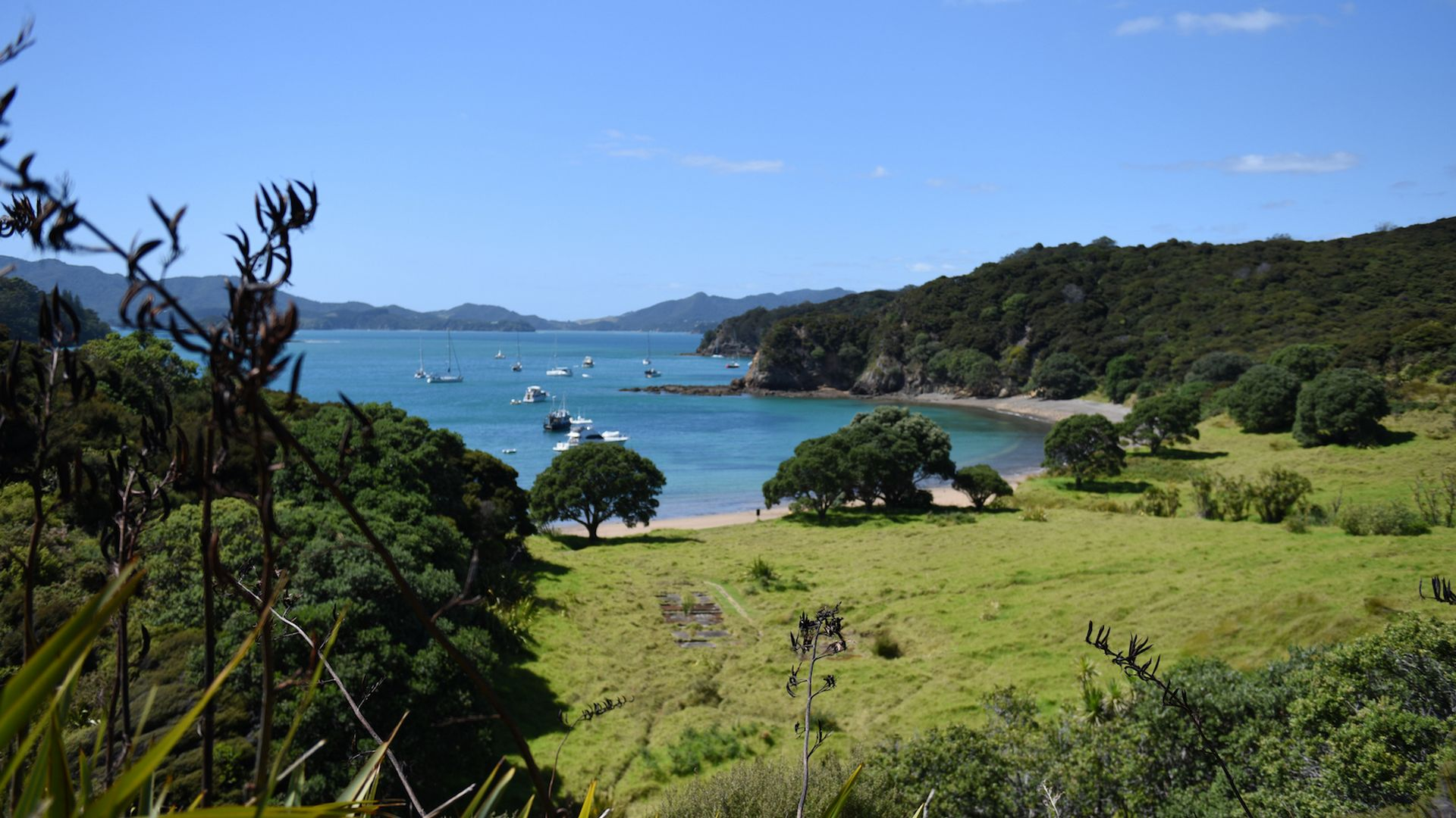 Stunning view at Palm beach, Bay of Islands together with The Rock Adventure Cruise