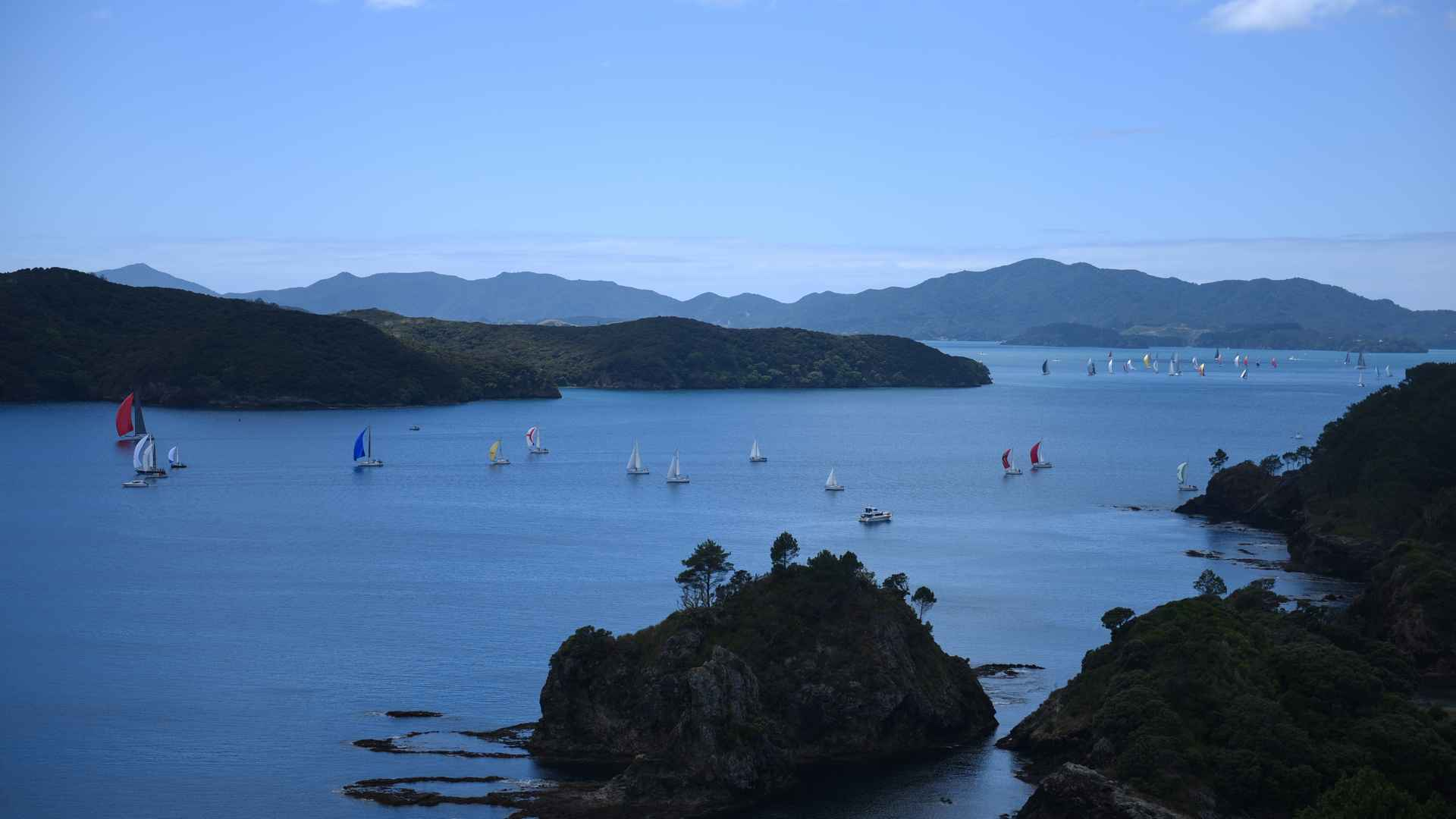 annual yatch regatta bay of islands